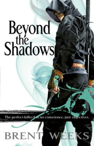 Beyond the Shadows capa